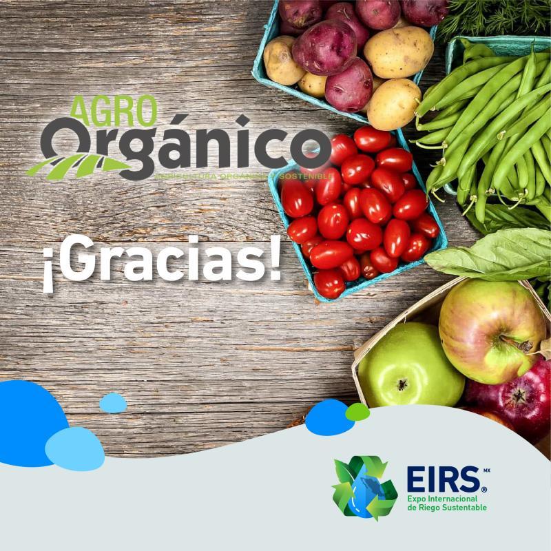 (Español) organico_A