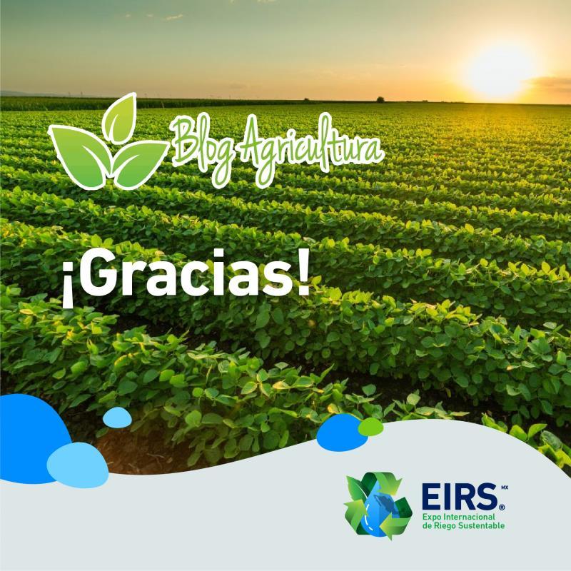(Español) blog_agricultura_a
