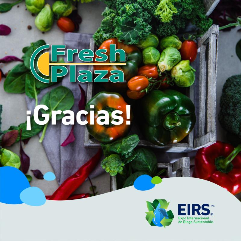 (Español) freshplaza_a