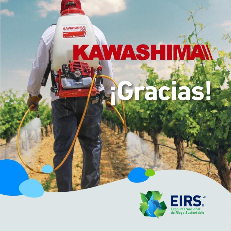 (Español) kawashima