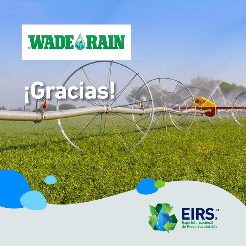 (Español) wade_rain