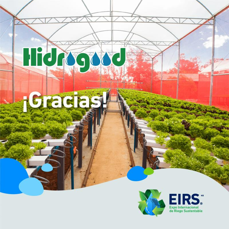 (Español) Hidrogood_a