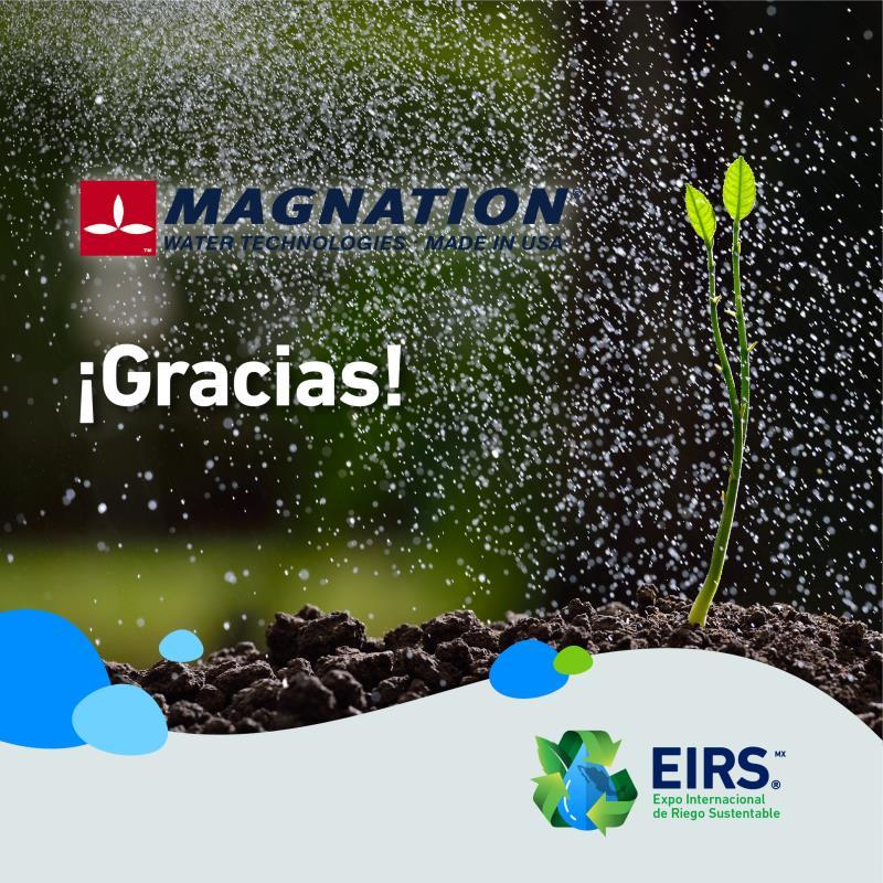 (Español) Magnation_a